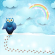 Sky background with owl