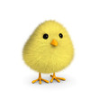 Fluffy Yellow Chick