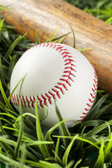New White Baseball in green grass