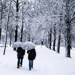 Couple walking in winter park