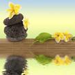 composition nature, détente, bien-être, relaxation