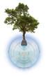 concept planète-océan à protéger