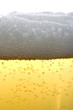 Beer close up bubbling
