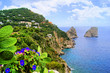 Famous Faraglioni rocks off the island of Capri, Italy