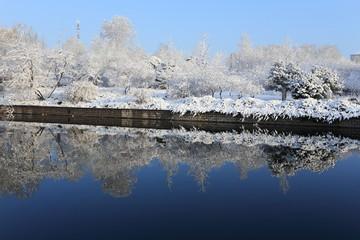 landscape of snow