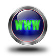 WWW glossy icon
