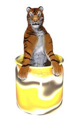 tigre dans un pot