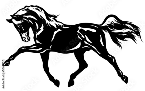trotting horse black white