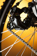 Rear bike cassette on the wheel with chain on the orange