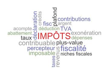 Nuage de mots impôts