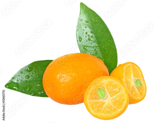 Sliced kumquat with leaf close up isolated.