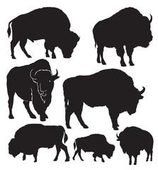 Buffalo vector silhouettes