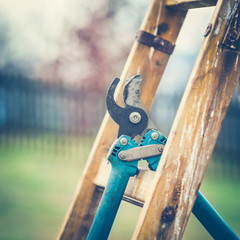 Detail of Gardening Secateurs Hang Up on a Gardening Ladder