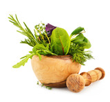 Mortar with fresh herbs isolated on white