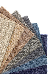 Catalog of colorful Carpets