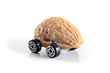 Nuts shell car