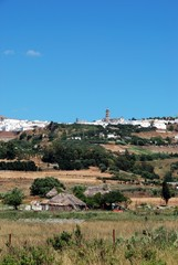 Farmland, Medina Sidonia, Andalusia © Arena Photo UK