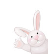 Vector of funny rabbit isolated.