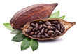 Cocoa pod - 50690760