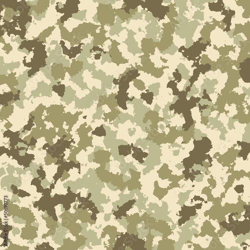 Camouflage pattern - vector