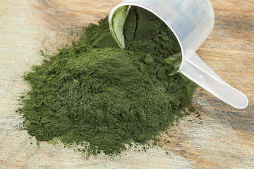 spirulina powder scoop