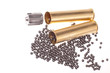 bullet, buckshot and brass shell casings on a white background