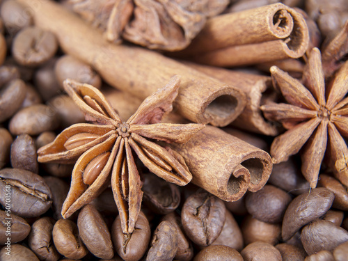anise-tree , cinnamon and coffee