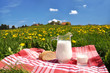Jug of milk and bread on the spring meadow. Emmental region, Swi