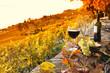 Leinwandbild Motiv Glass of red wine on the terrace vineyard in Lavaux region, Swit