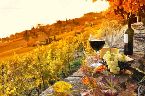 Papiers peints Vin Glass of red wine on the terrace vineyard in Lavaux region, Swit