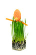 Easter egg on fresh green wheat grass