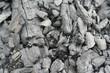 carbone vegetale - 50716924