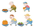 Farmers with vegetables and pumpkins