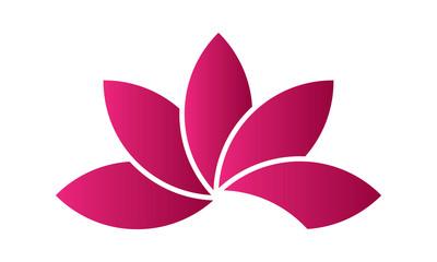 Fleur Lotus rose