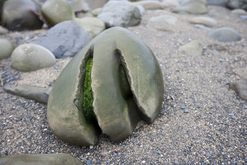Weathered grooves in a stone, Ballinskellig beach, Ireland