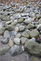 Stones on the beach at Ballinskelling beach, Ireland