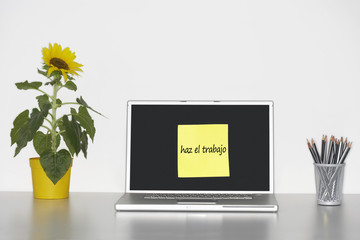 "Sunflower plant on desk and sticky notepaper with Spanish text on laptop screen saying ""haz el trabajo"" (Do some work)"