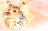 Collie dog aquarelle painting imitation