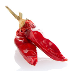 Two red hot chili pepper