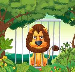 An angry lion inside a cage
