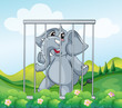 A caged gray elephant