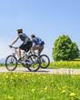 Mountainbiken im Frühling