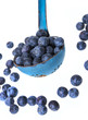 a ladle with blueberries onva white background