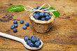 fresh blueberries on a table - still life