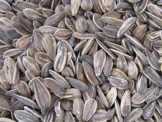 Pipas de girasol, sunflower seed.