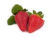Erdbeeren mit Blätter Freisteller II