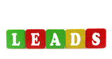 leads - isolated text in wooden building blocks