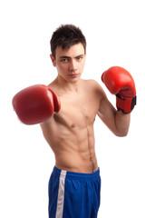 Portrait of boxer