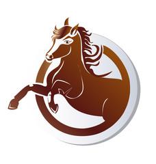 Horse icon logo vector