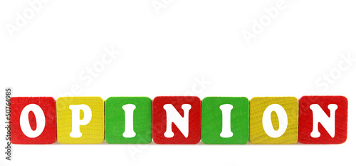 opinion - isolated text in wooden building blocks